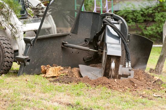 Fayetteville AR Stump Grinding